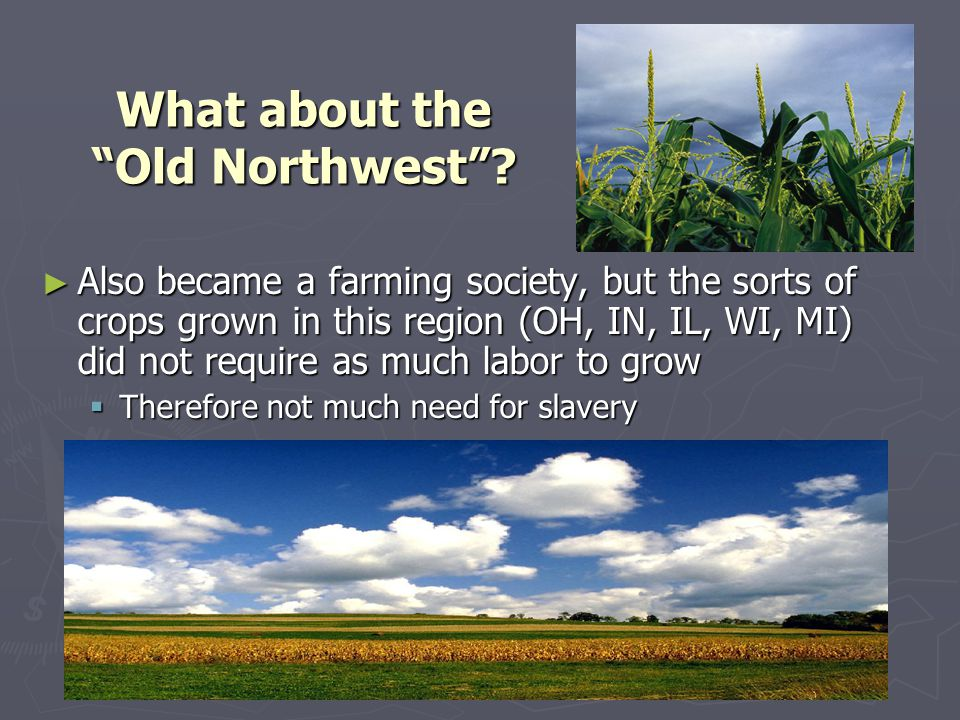 "What about the ""Old Northwest""? ► Also became a farming society, but the sorts of crops grown in this region (OH, IN, IL, WI, MI) did not require as m"