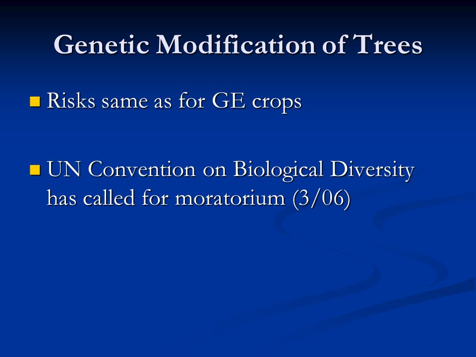 Genetic Modification of Trees Risks same as for GE crops Risks same as for GE crops UN Convention on Biological Diversity has called for moratorium (3/06) UN Convention on Biological Diversity has called for moratorium (3/06)