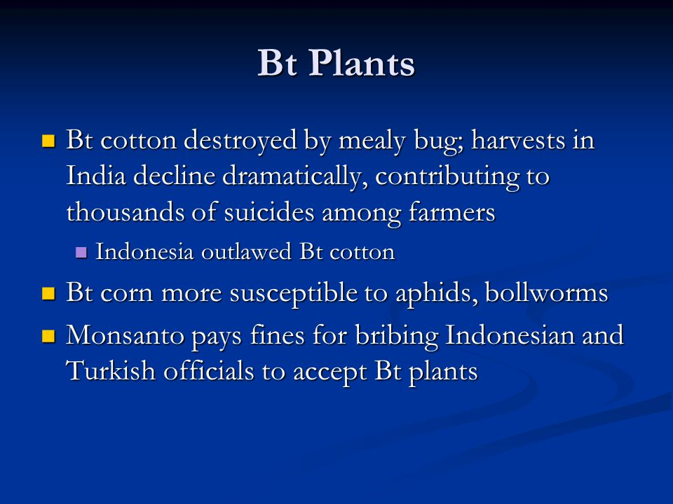 Bt Plants Bt cotton destroyed by mealy bug; harvests in India decline dramatically, contributing to thousands of suicides among farmers Bt cotton destroyed by mealy bug; harvests in India decline dramatically, contributing to thousands of suicides among farmers Indonesia outlawed Bt cotton Indonesia outlawed Bt cotton Bt corn more susceptible to aphids, bollworms Bt corn more susceptible to aphids, bollworms Monsanto pays fines for bribing Indonesian and Turkish officials to accept Bt plants Monsanto pays fines for bribing Indonesian and Turkish officials to accept Bt plants