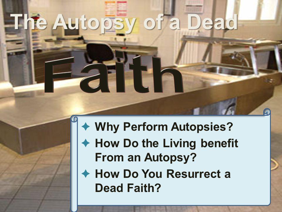 What Is a Dead Faith.