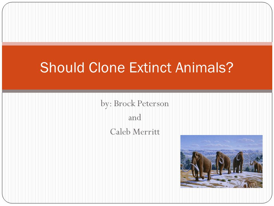 by: Brock Peterson and Caleb Merritt Should Clone Extinct Animals