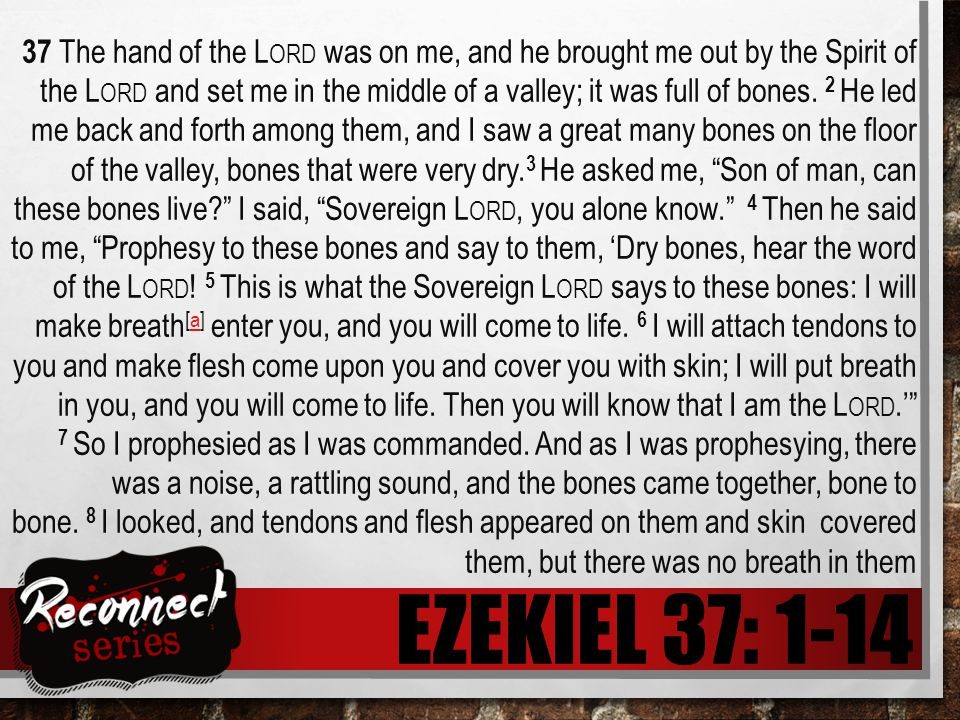 EZEKIEL 37: 1-14 37 The hand of the L ORD was on me, and he brought me out by the Spirit of the L ORD and set me in the middle of a valley; it was full of bones.