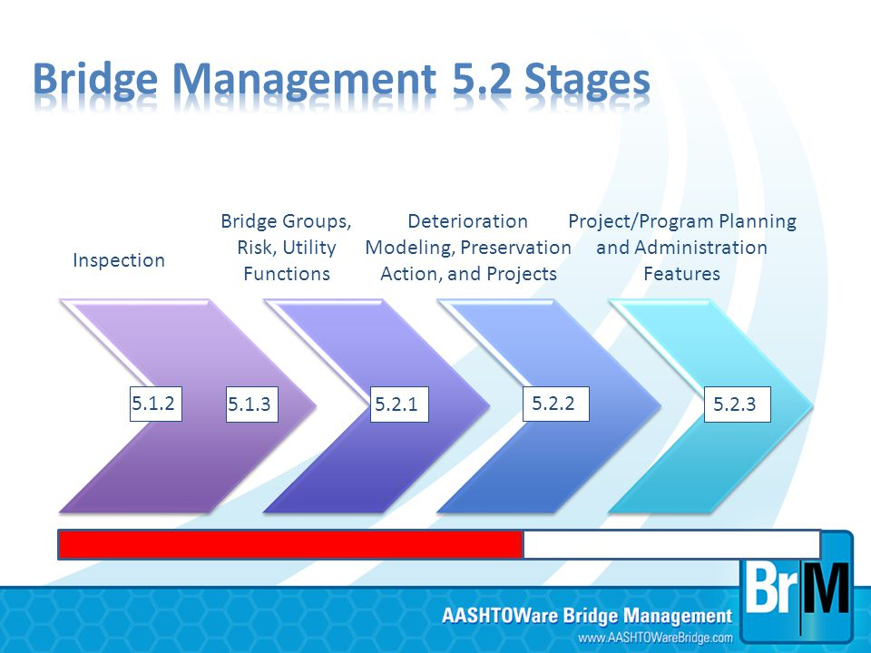Inspection Bridge Groups, Risk, Utility Functions Deterioration Modeling, Preservation Action, and Projects Project/Program Planning and Administratio