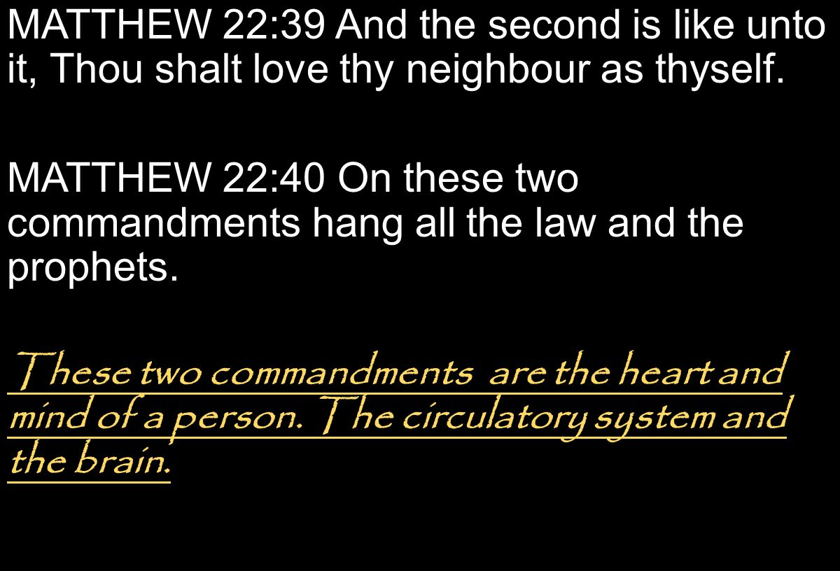 MATTHEW 22:39 And the second is like unto it, Thou shalt love thy neighbour as thyself.