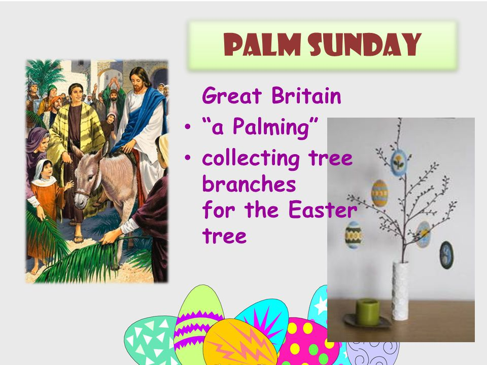 Palm sunday Great Britain a Palming сollecting tree branches for the Easter tree