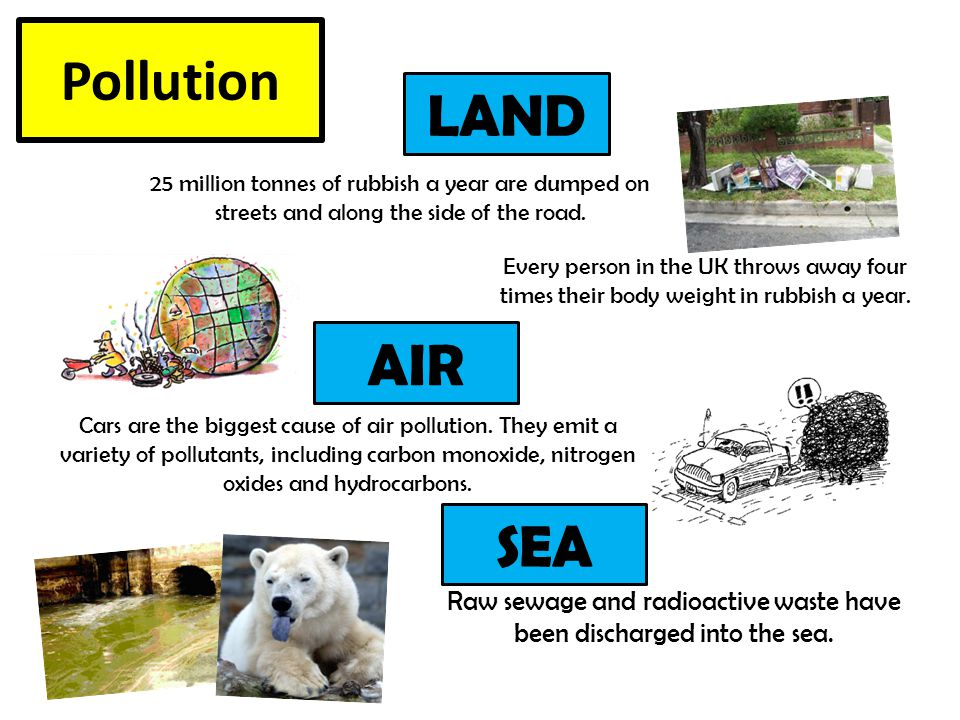 Pollution 25 million tonnes of rubbish a year are dumped on streets and along the side of the road. Every person in the UK throws away four times thei