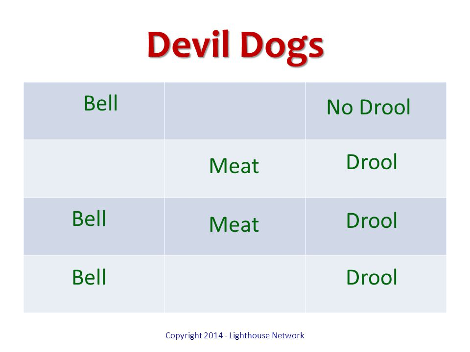 Devil Dogs Copyright 2014 - Lighthouse Network Bell Meat No Drool Drool
