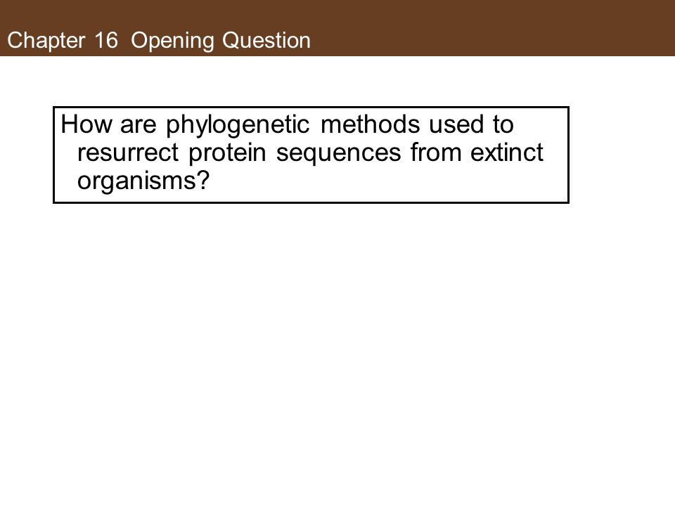 Chapter 16 Opening Question How are phylogenetic methods used to resurrect protein sequences from extinct organisms?