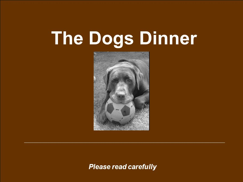 Please read carefully The Dogs Dinner