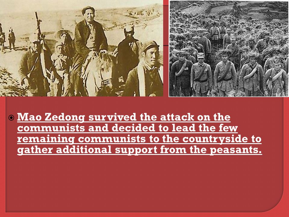  Mao Zedong survived the attack on the communists and decided to lead the few remaining communists to the countryside to gather additional support from the peasants.