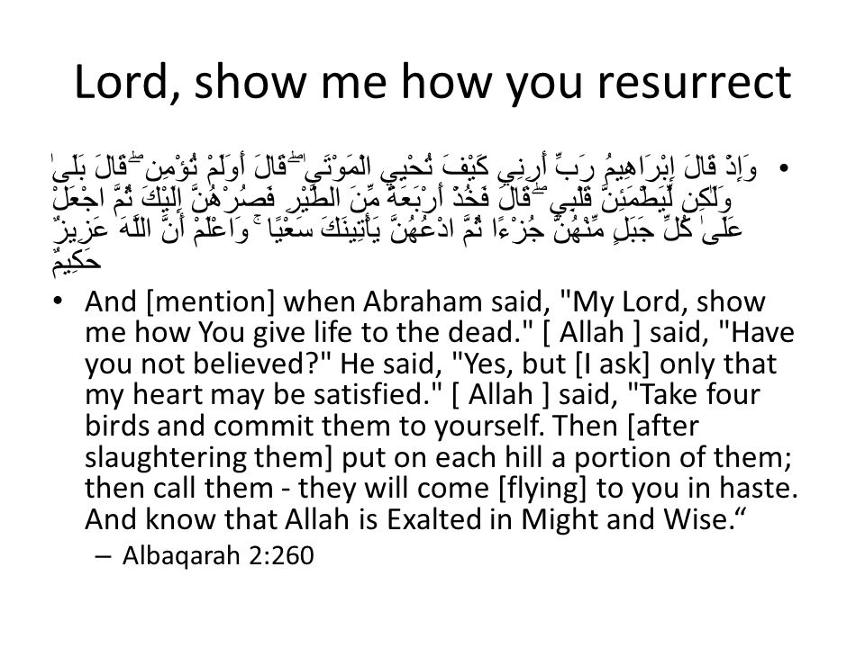 Lord, show me how you resurrect وَإِذْ قَالَ إِبْرَاهِيمُ رَبِّ أَرِنِي كَيْفَ تُحْيِي الْمَوْتَىٰ ۖ قَالَ أَوَلَمْ تُؤْمِن ۖ قَالَ بَلَىٰ وَلَٰكِن لِّيَطْمَئِنَّ قَلْبِي ۖ قَالَ فَخُذْ أَرْبَعَةً مِّنَ الطَّيْرِ فَصُرْهُنَّ إِلَيْكَ ثُمَّ اجْعَلْ عَلَىٰ كُلِّ جَبَلٍ مِّنْهُنَّ جُزْءًا ثُمَّ ادْعُهُنَّ يَأْتِينَكَ سَعْيًا ۚ وَاعْلَمْ أَنَّ اللَّهَ عَزِيزٌ حَكِيمٌ And [mention] when Abraham said, My Lord, show me how You give life to the dead. [ Allah ] said, Have you not believed He said, Yes, but [I ask] only that my heart may be satisfied. [ Allah ] said, Take four birds and commit them to yourself.