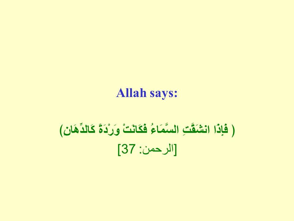 Allah says: ﴿ فَإِذَا انشَقَّتِ السَّمَاءُ فَكَانَتْ وَرْدَةً كَالدِّهَانِ﴾ [ الرحمن : 37]