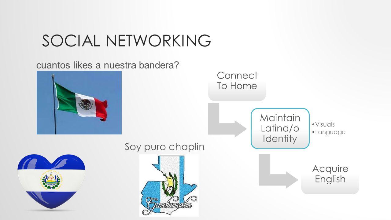 SOCIAL NETWORKING cuantos likes a nuestra bandera.