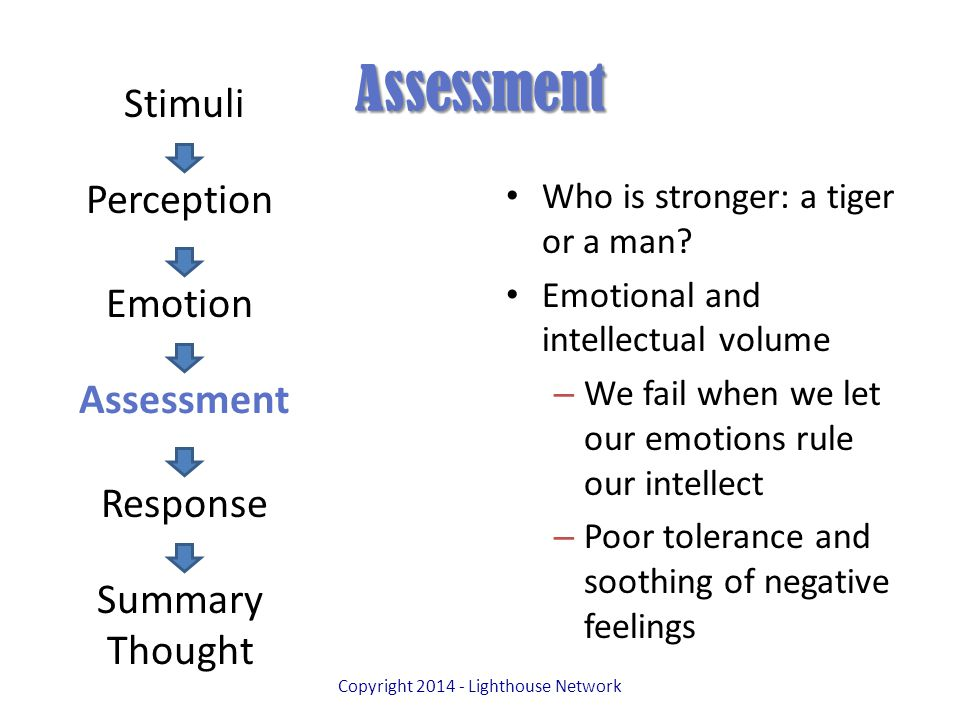 Assessment Who is stronger: a tiger or a man.