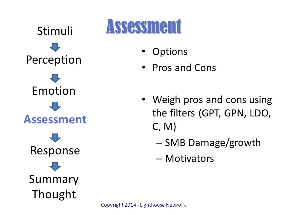 Assessment Options Pros and Cons Weigh pros and cons using the filters (GPT, GPN, LDO, C, M) – SMB Damage/growth – Motivators Copyright 2014 - Lighthouse Network Stimuli Perception Emotion Assessment Response Summary Thought