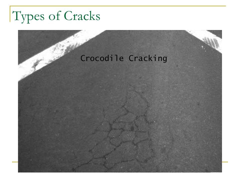 Types of Cracks Crocodile Cracking
