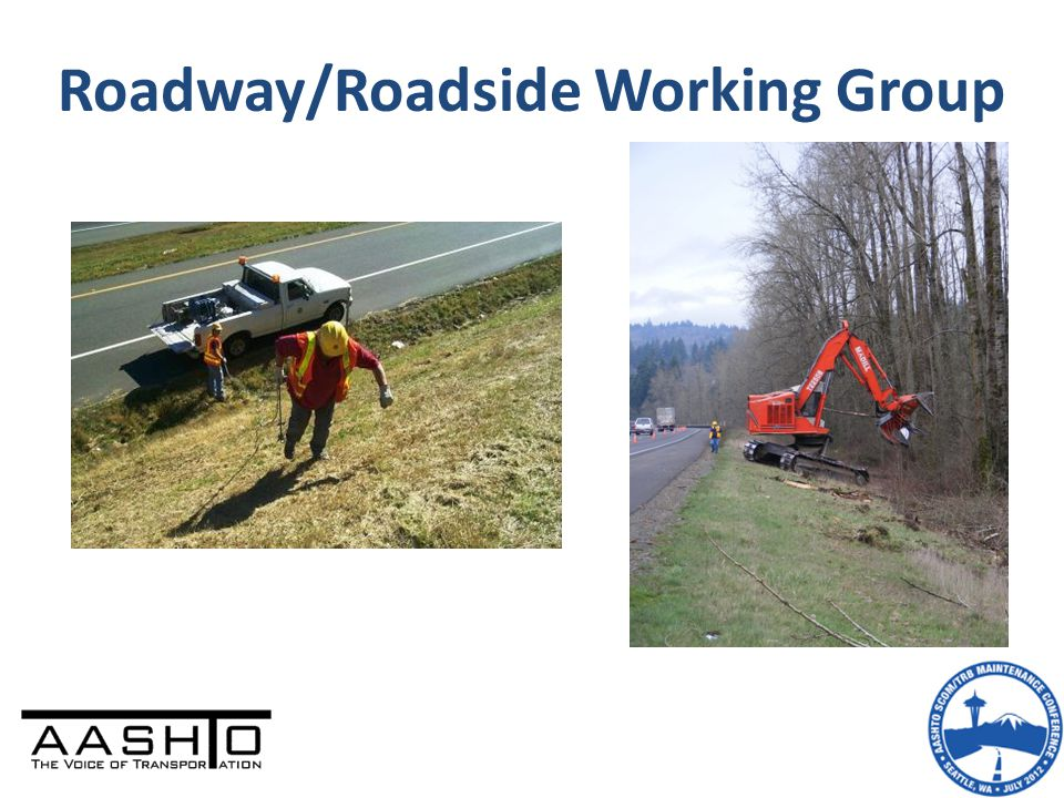 Roadway/Roadside Working Group
