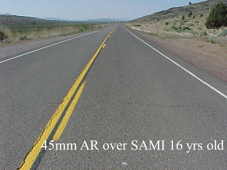 45mm AR over SAMI 16 yrs old