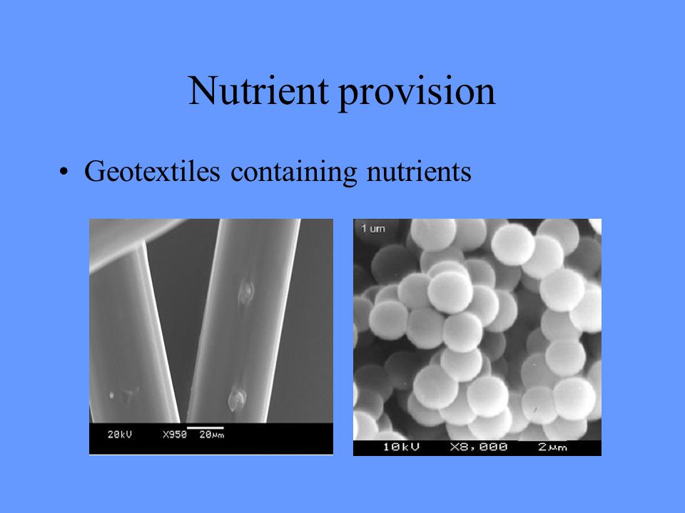 Nutrient provision Geotextiles containing nutrients