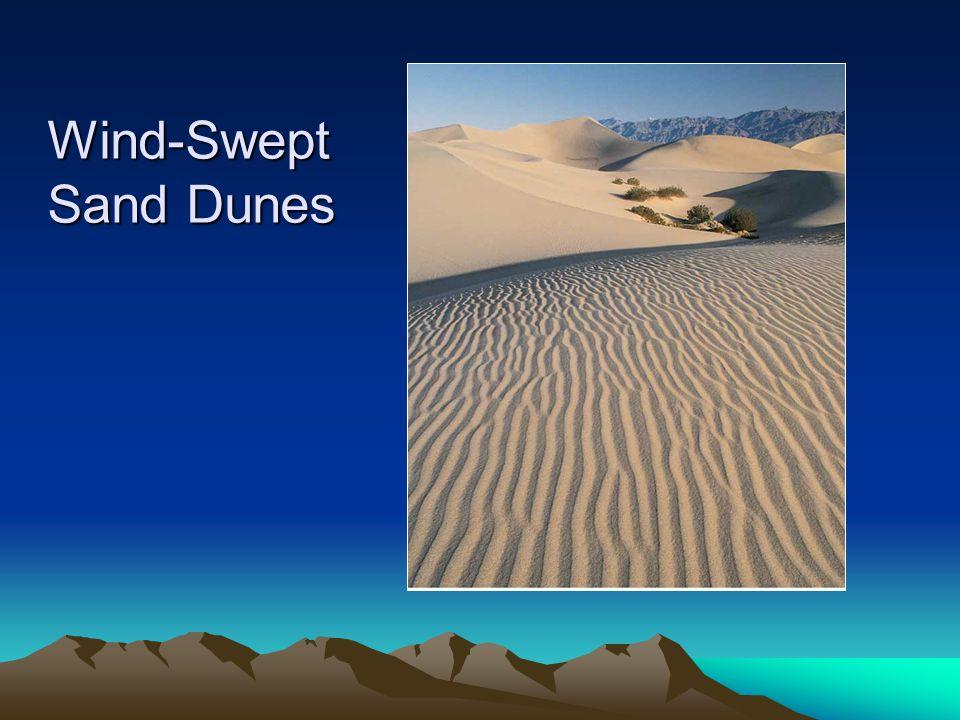 Wind-Swept Sand Dunes