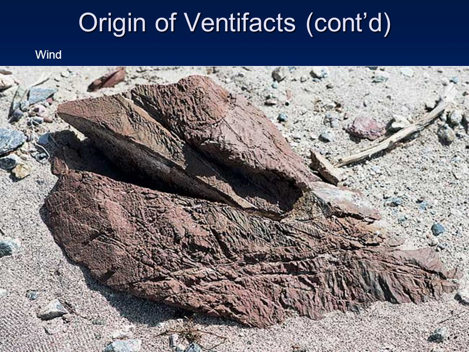 Origin of Ventifacts (cont'd) Wind