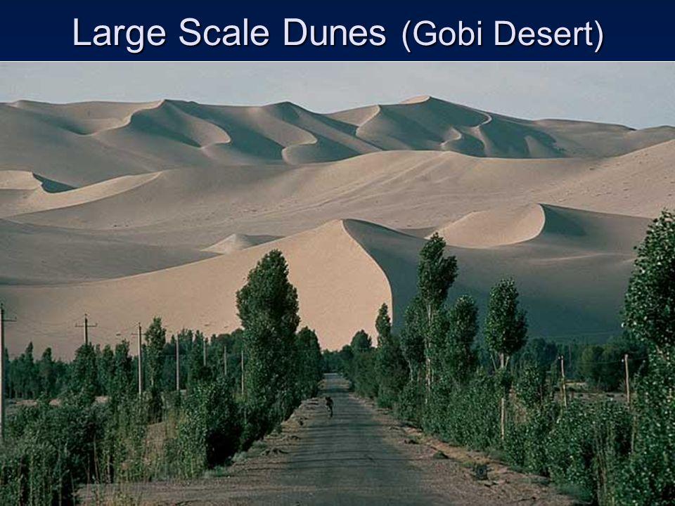 Large Scale Dunes (Gobi Desert)