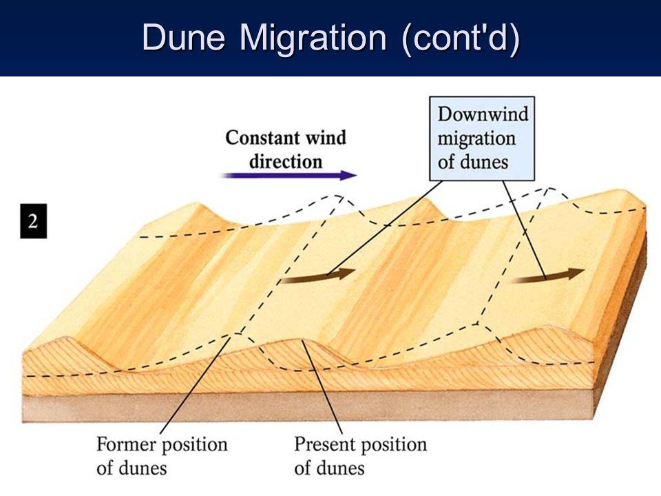 Dune Migration (cont d)