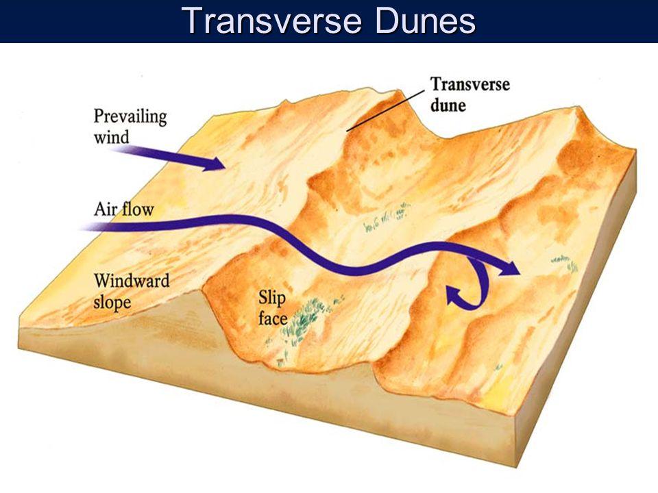 Transverse Dunes