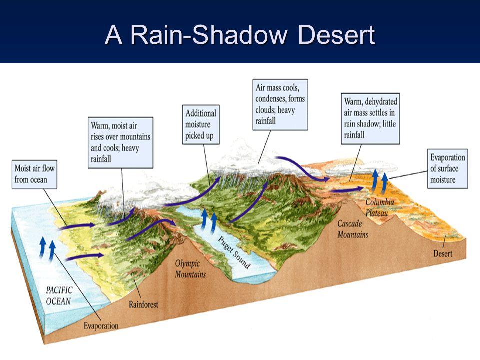 A Rain-Shadow Desert