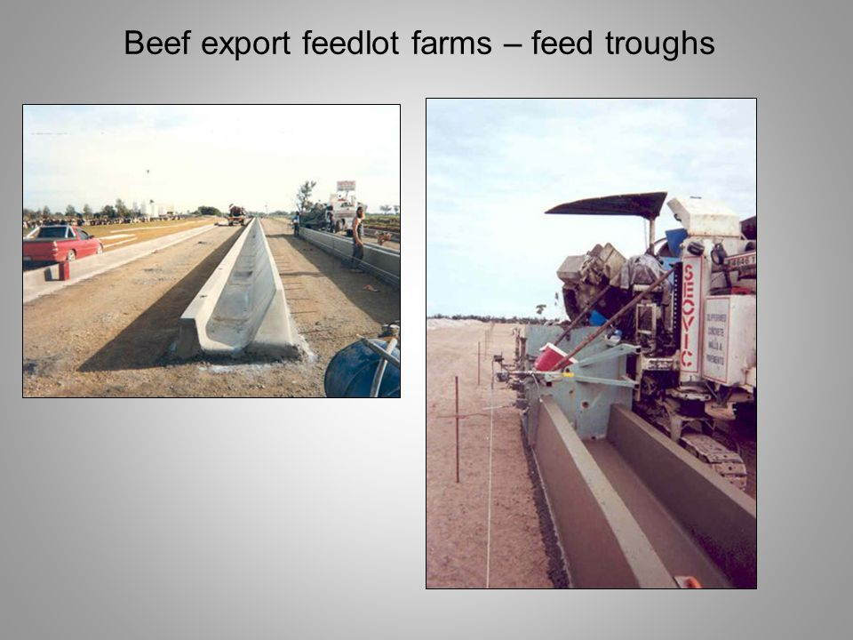 Beef export feedlot farms – feed troughs