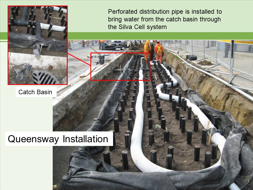 Perforated distribution pipe is installed to bring water from the catch basin through the Silva Cell system Queensway Installation Catch Basin