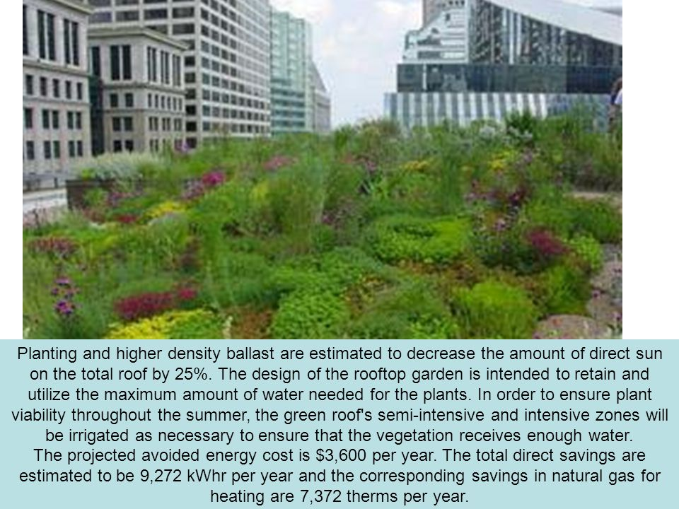 Planting and higher density ballast are estimated to decrease the amount of direct sun on the total roof by 25%.