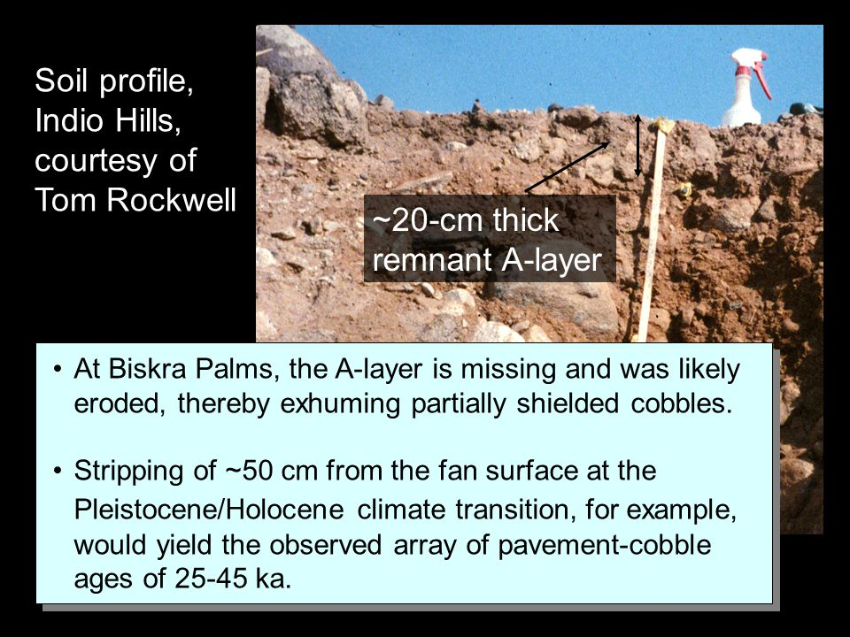 Soil profile, Indio Hills, courtesy of Tom Rockwell ~20-cm thick remnant A-layer At Biskra Palms, the A-layer is missing and was likely eroded, thereb