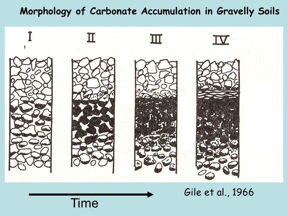 Morphology of Carbonate Accumulation in Gravelly Soils Gile et al., 1966 Time