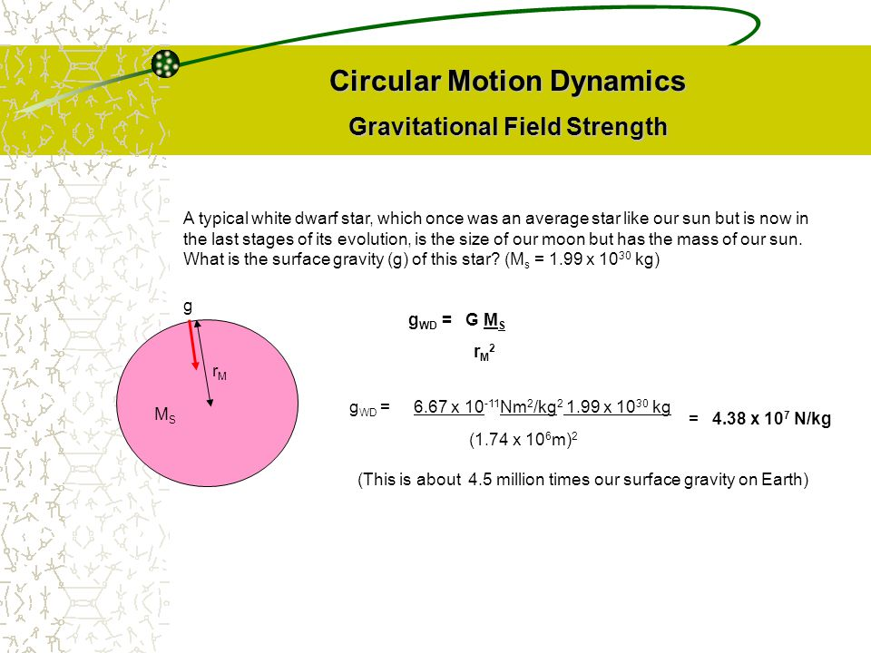 Circular Motion Dynamics Gravitational Field Strength MSMS rMrM g g WD = 6.67 x 10 -11 Nm 2 /kg 2 1.99 x 10 30 kg (1.74 x 10 6 m) 2 = 4.38 x 10 7 N/kg (This is about 4.5 million times our surface gravity on Earth) A typical white dwarf star, which once was an average star like our sun but is now in the last stages of its evolution, is the size of our moon but has the mass of our sun.