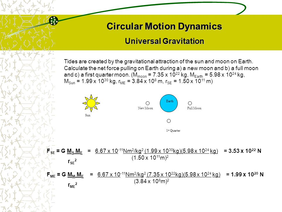 Circular Motion Dynamics Universal Gravitation Tides are created by the gravitational attraction of the sun and moon on Earth. Calculate the net force