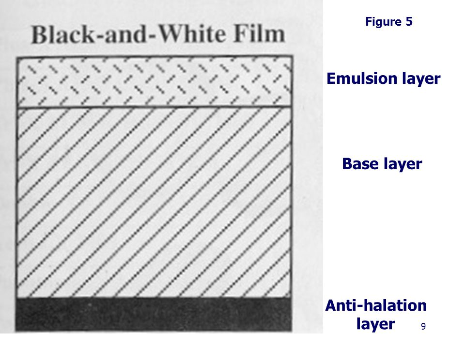 9 Emulsion layer Base layer Anti-halation layer Figure 5