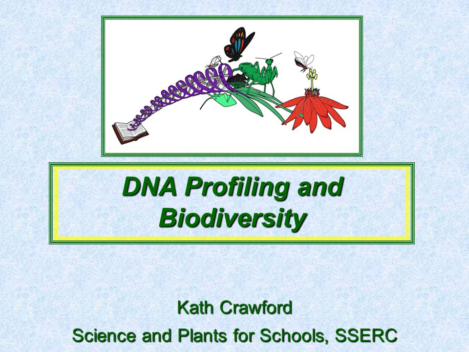 Science and Plants for Schools, SSERC DNA Profiling and Biodiversity Kath Crawford