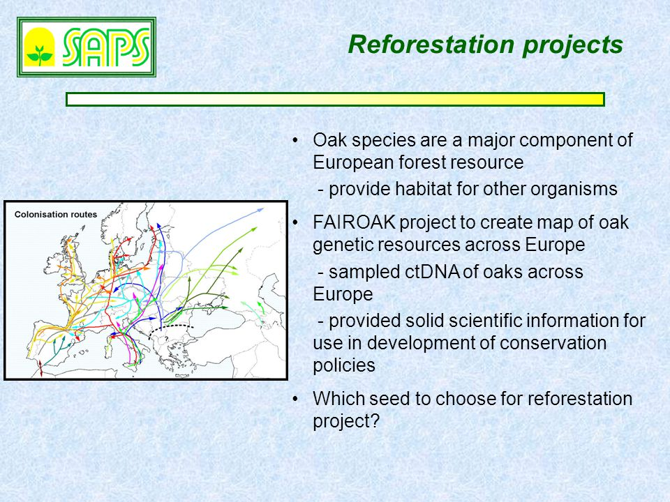 Reforestation projects Oak species are a major component of European forest resource - provide habitat for other organisms FAIROAK project to create map of oak genetic resources across Europe - sampled ctDNA of oaks across Europe - provided solid scientific information for use in development of conservation policies Which seed to choose for reforestation project