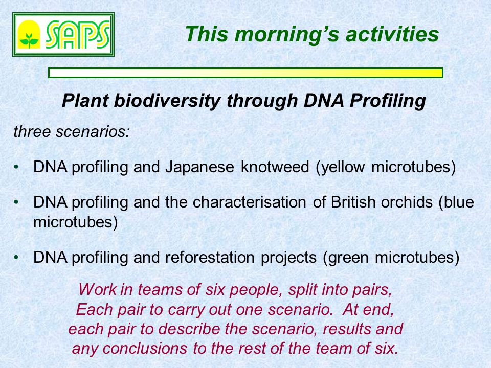Plant biodiversity through DNA Profiling This morning's activities three scenarios: DNA profiling and Japanese knotweed (yellow microtubes) DNA profiling and the characterisation of British orchids (blue microtubes) DNA profiling and reforestation projects (green microtubes) Work in teams of six people, split into pairs, Each pair to carry out one scenario.