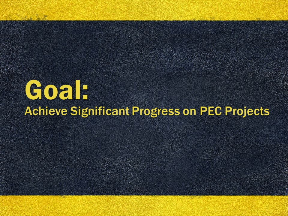 10 Goal: Achieve Significant Progress on PEC Projects