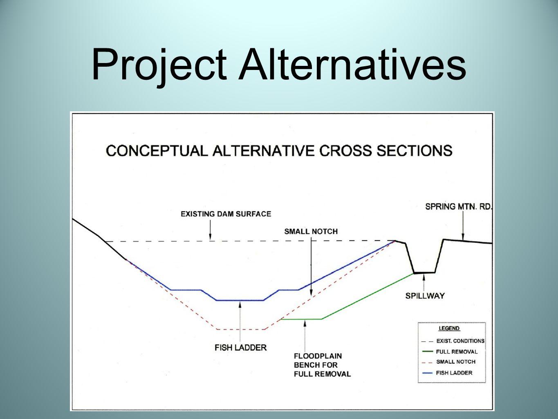 Project Alternatives