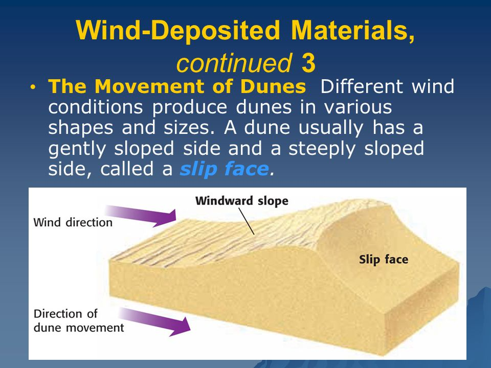 Wind-Deposited Materials, continued 3 The Movement of Dunes Different wind conditions produce dunes in various shapes and sizes.