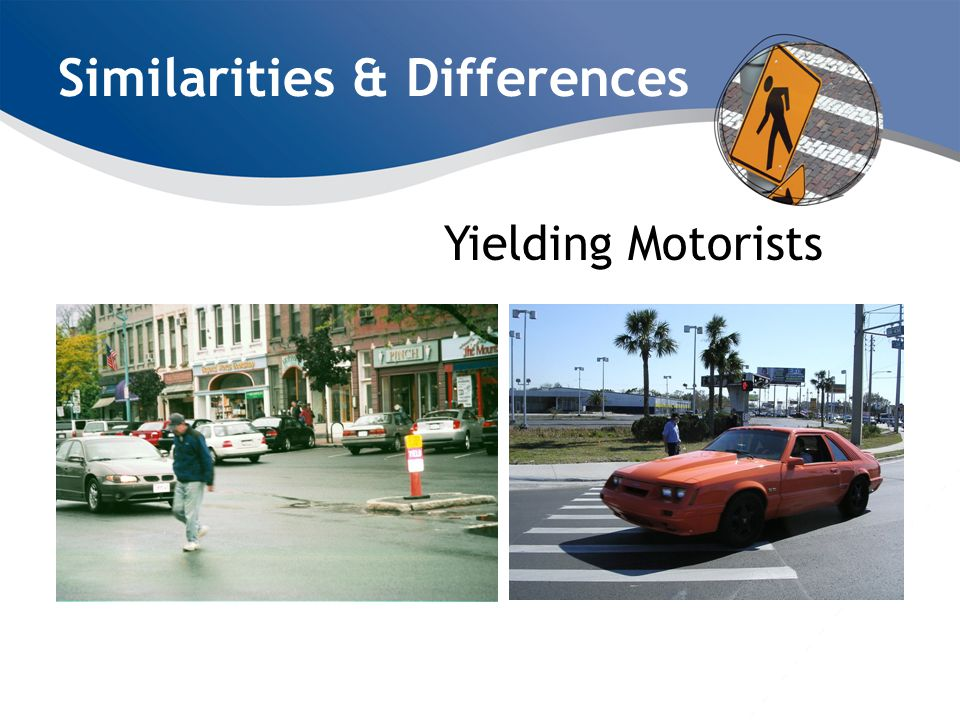 Similarities & Differences Yielding Motorists