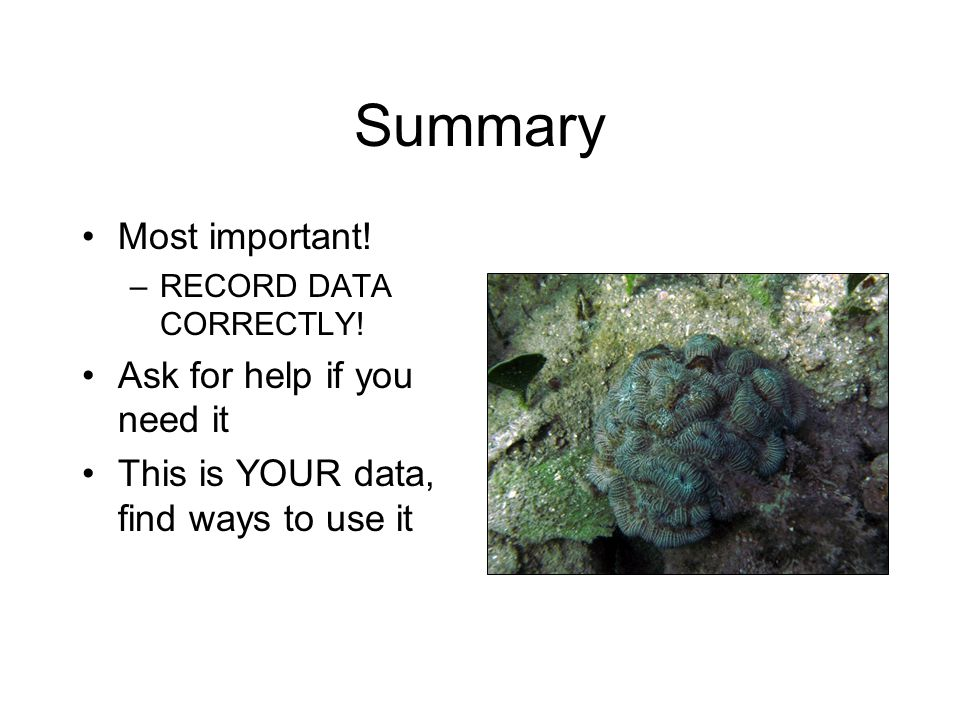 Summary Most important! –RECORD DATA CORRECTLY! Ask for help if you need it This is YOUR data, find ways to use it