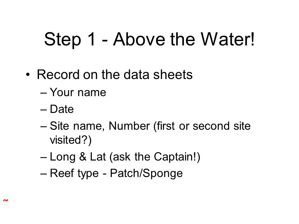 Step 1 - Above the Water! Record on the data sheets –Your name –Date –Site name, Number (first or second site visited?) –Long & Lat (ask the Captain!)