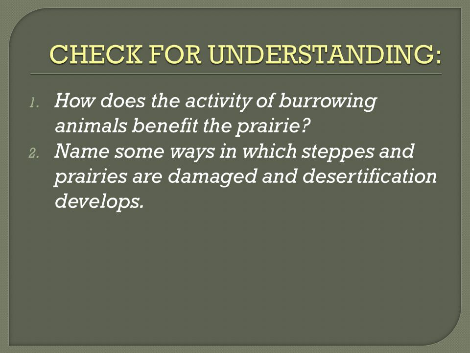 1. How does the activity of burrowing animals benefit the prairie? 2. Name some ways in which steppes and prairies are damaged and desertification dev