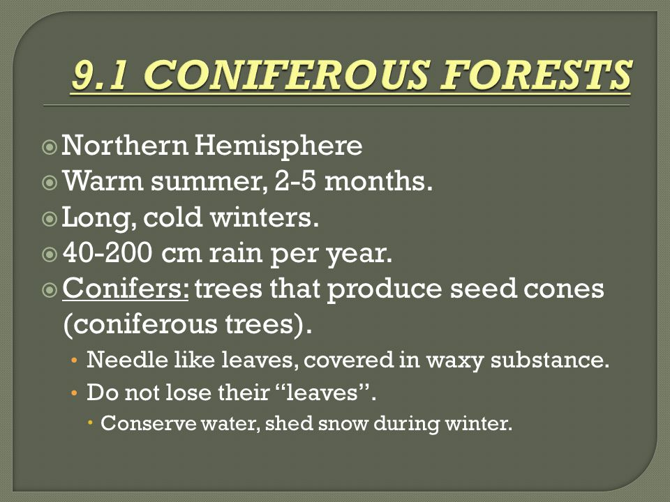  Northern Hemisphere  Warm summer, 2-5 months.  Long, cold winters.  40-200 cm rain per year.  Conifers: trees that produce seed cones (coniferou
