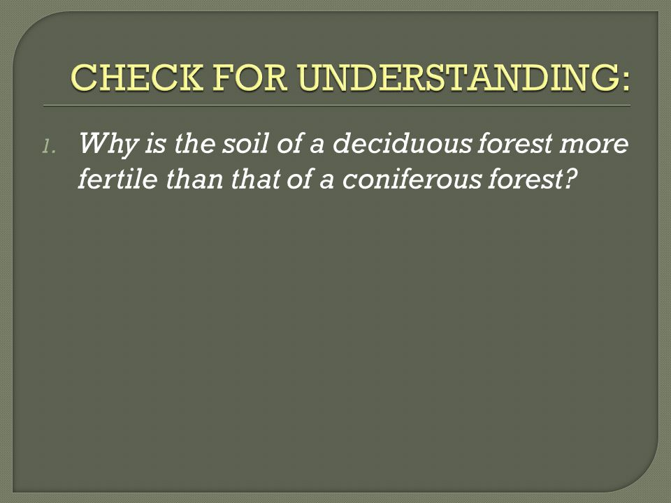 1. Why is the soil of a deciduous forest more fertile than that of a coniferous forest?