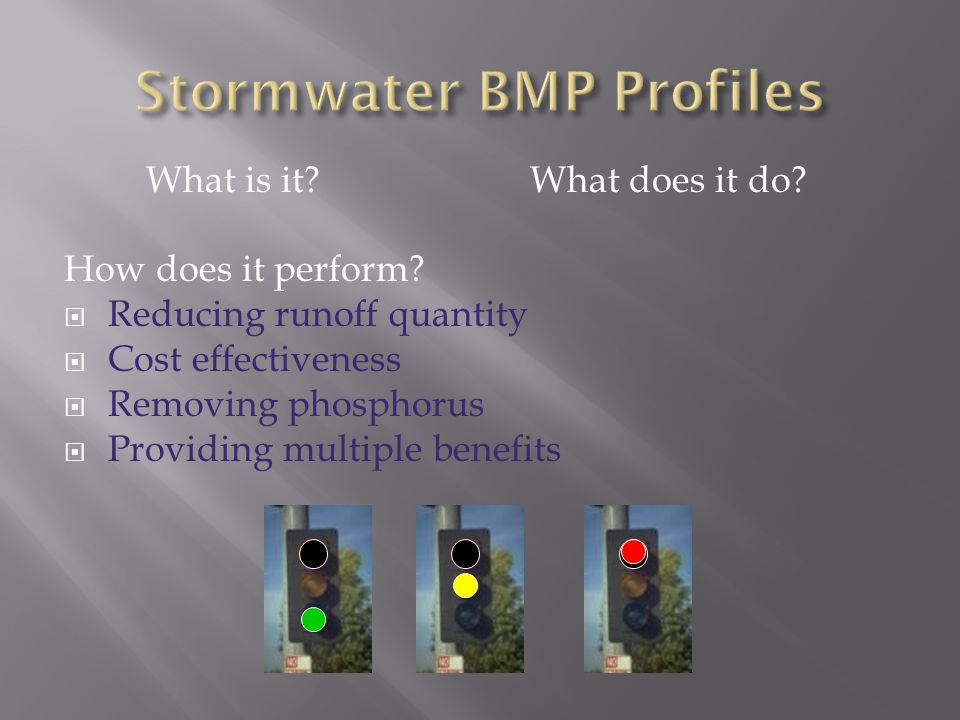 What is it? What does it do? How does it perform?  Reducing runoff quantity  Cost effectiveness  Removing phosphorus  Providing multiple benefits
